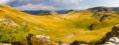 Transalpina panorama II