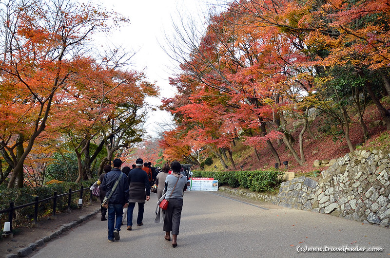 Kiyomizudera- Autumn colours in Japan