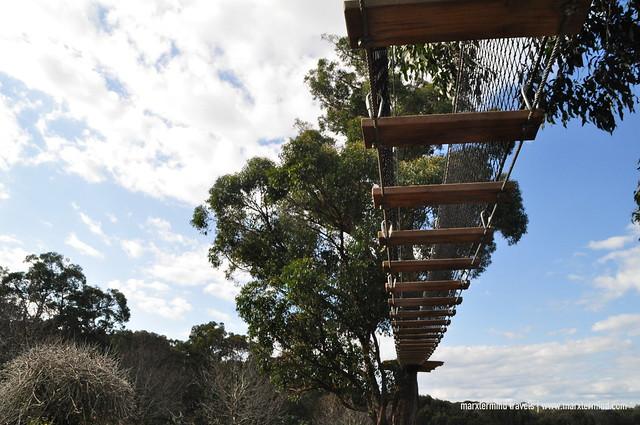 Treetop Adventure at Enchanted Adventure Garden