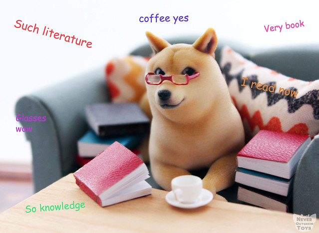 doge read copy