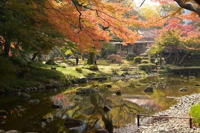 Gentle Autumn