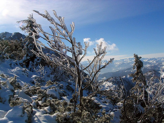 Frostklar, Canon POWERSHOT A70