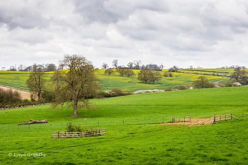 landscape unitedkingdom northamptonshire coutryside watermarked landscapephotography outdoorphotography holdenby