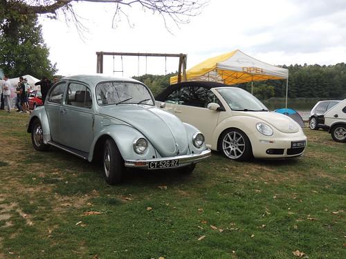 volkswagen type1 cox & new beetle
