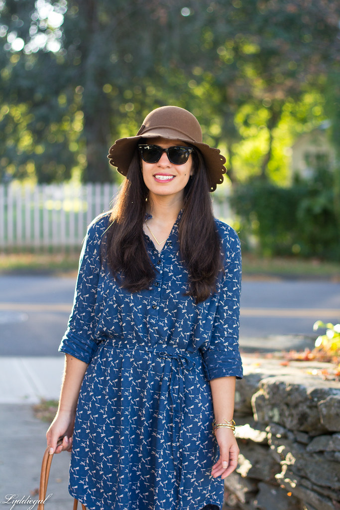 dragonfly print shirt dress, brown tote, scalloped brim hat-9.jpg