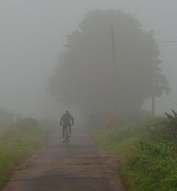 Fog Colour
