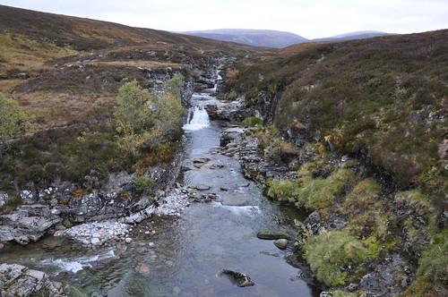 River Eidart