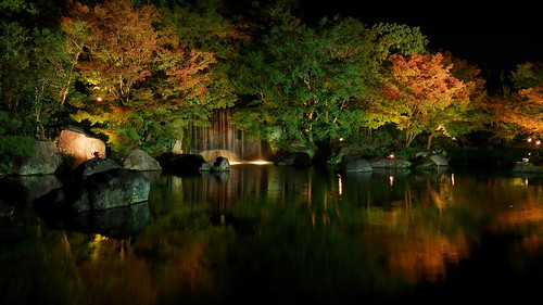 longexposure autumn heritage fall night lights waterfall pond driving nightshot stones traditional illuminated japanesemaple le zen 日本 himeji 紅葉 albero castello baum giappone cultural hyogo giapponese himejicastle 好古園 姫路城 姫路 ライトアップ forr allmanual 幽玄 albol manualshooting castelodehimeji