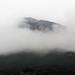 Neblina por heldraug