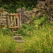 Stone wall and gate by anitabower
