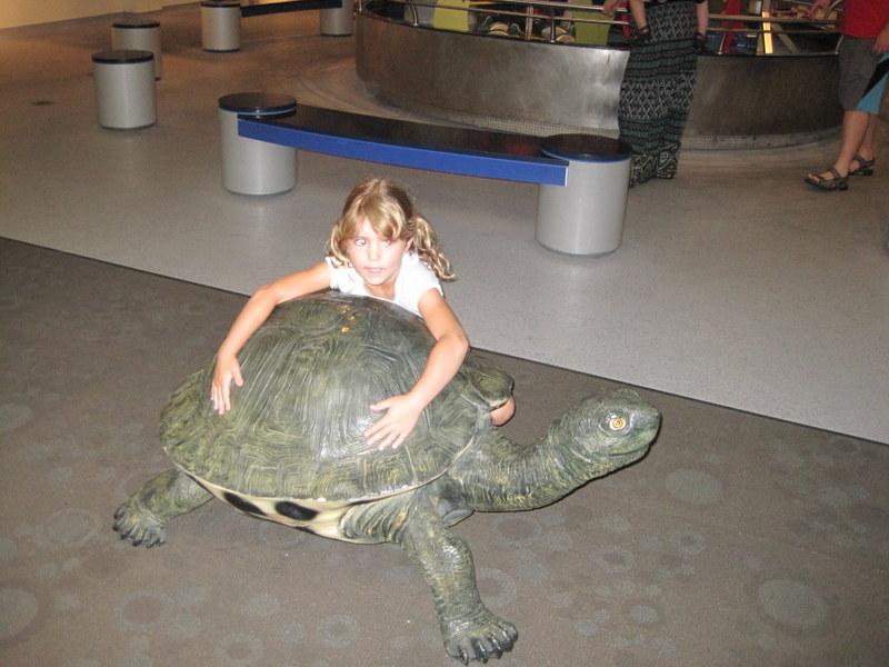 Museum Aquarium (19)