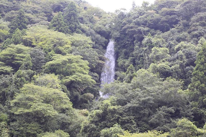 2015Kagoshima150