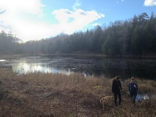 walk to preston pond