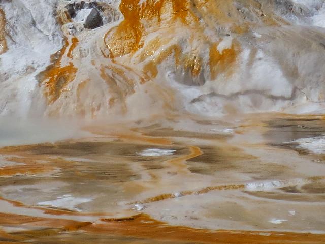 Photo:Orange and white geothermal algae By purdyrns