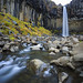 Svartifoss in Falls by Zur@imiAbro@d