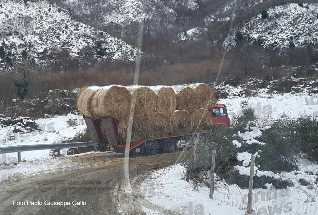 neve corticato 10 gennaio 01