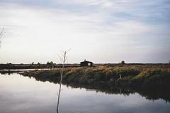 Cabane dans les marais