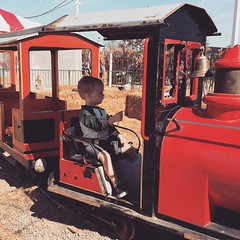 Jack rode the choo choo all by himself! And he got to ring the bell. #jdquickgram