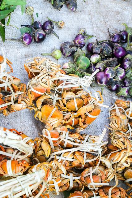 Small crabs in the market, Luang Prabang, laos ルアンパバーン、青空市場の小さなカニ