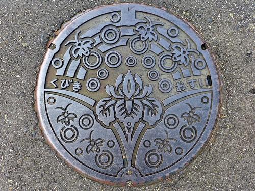 Kubiki Nigata, manhole cover (新潟県頚城村のマンホール)