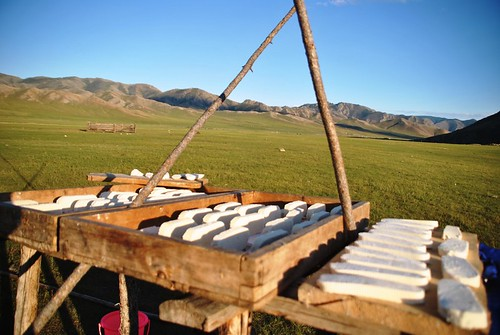 163 Viaje al oeste de Mongolia (90)