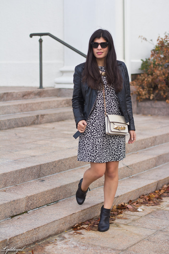 leopard dress, leather moto jacket, studded bag-1.jpg