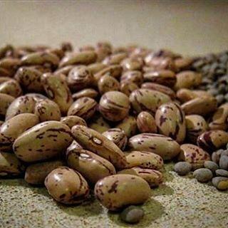 Disminuye un 74% el consumo de legumbres desde los años 60 #InstitutoTALADRIZ http://buff.ly/2p37Hqj