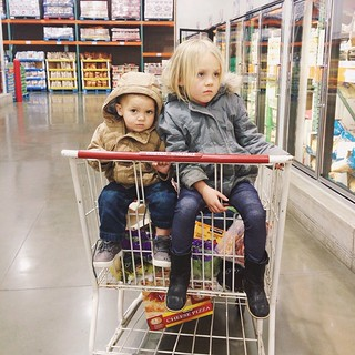 On our way home from the airport we ran into Costco, and these jet-lagged sweethearts were not impressed.