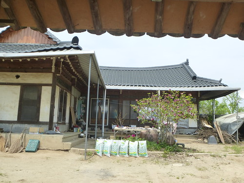 Co-Andong-Hahoe-Village (44)