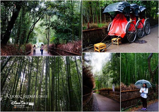 Kyoto - Arashiyama 02