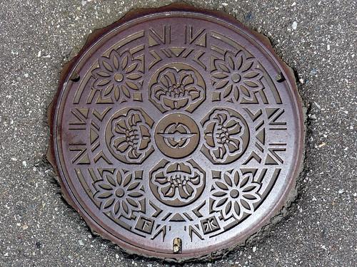 Hosoiri Toyama, manhole cover (富山県細入村のマンホール)