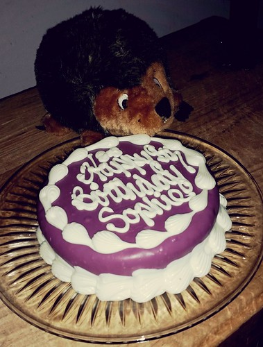 Sophie's Dog Birthday Cake by The Barkery - Lapdog Creations