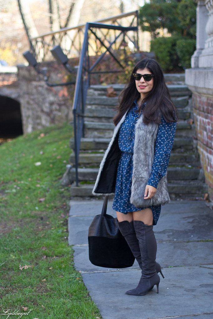 dragonfly print dress, over the knee boots, fur vest.jpg