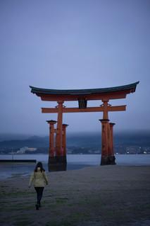 Image of Itsukushima Shrine near Miyajima. japan shrine hiroshima miyajima lowtide torii itsukushimajinja