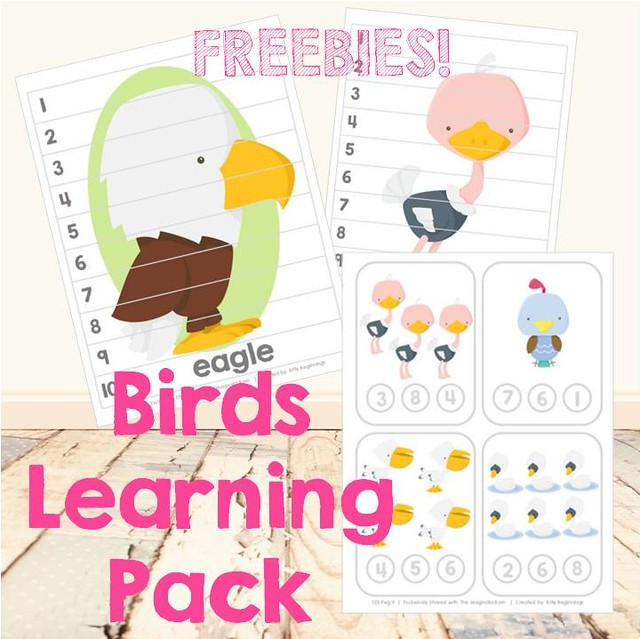 Birds Learning Pack Freebies Cover Image