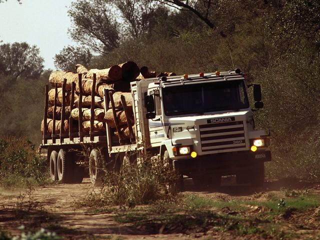 Лесовоз Scania T113H 360 4x2. 1991 – 1996 годы