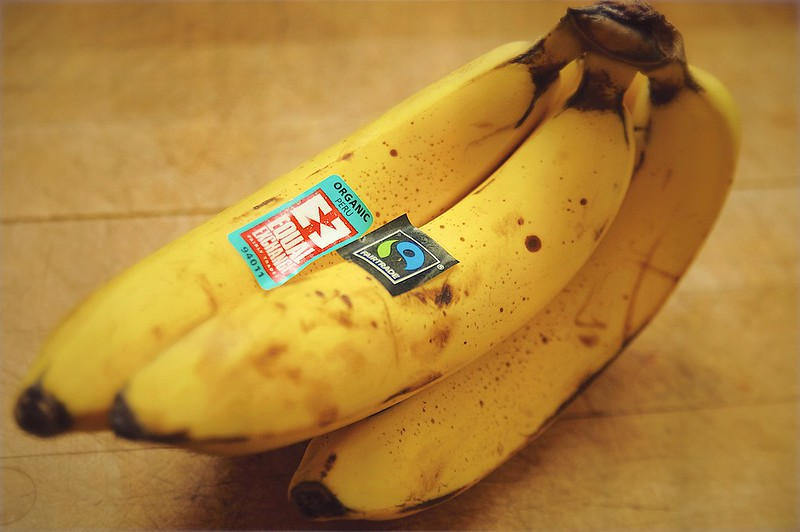 335/365. this is bananas! more adventures with a cadaver bone graft.