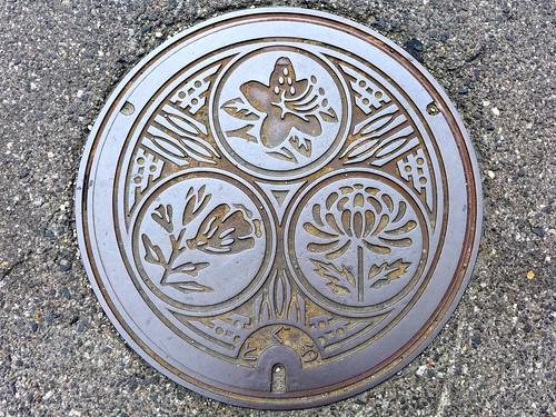 Togura Nagano, manhole cover (長野県戸倉町のマンホール)