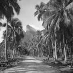 Polynésie 1969/1970