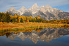 Fall Morning at Schwabachers Landing, Grand Teton National Park
