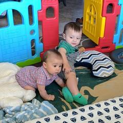 Dem boys having a play date.  #iripino #seamussullivan #bestfriendsforever