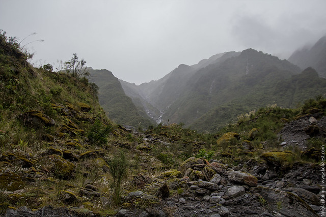 NZ_day9-44