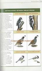 Back Yard Bird Book