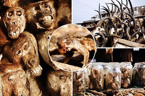 Những bí ẩn bên trong khu chợ bùa ngải lớn nhất thế giới
