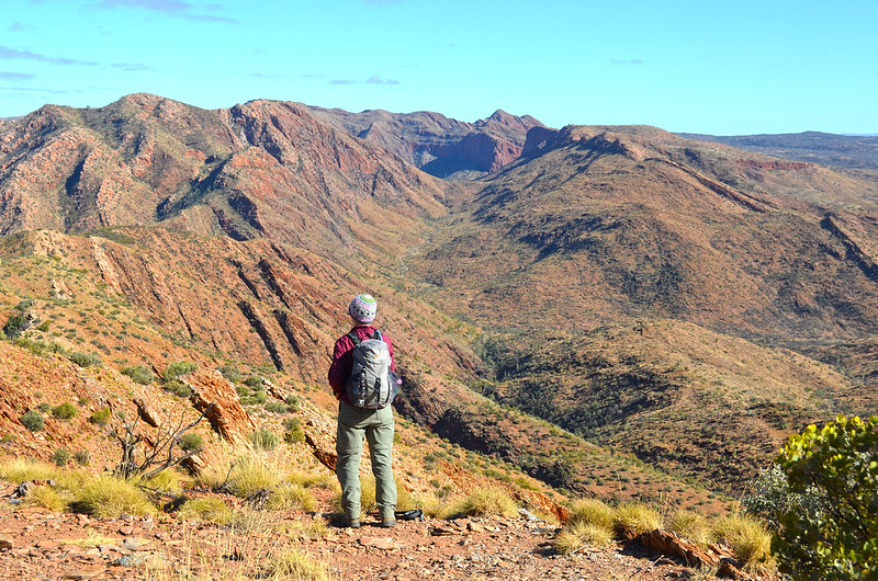 The Razorback - Larapinta Trail