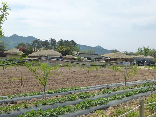 Co-Andong-Hahoe-Village (6)