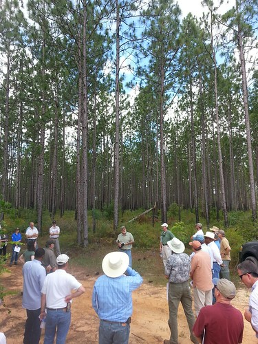 A group touring a RCPP project area in the Coastal Headwaters Forest