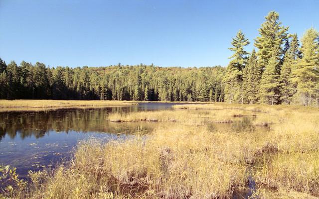 Bat Lake 4