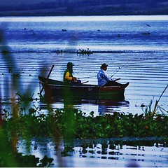 Pelo rio Tietê em Itapura (SP), clicados por Marcello Toldi... #BlogAuroradeCinemaaplaude #igerssp #azul @mtoldi #click #igersbrasil #brazil #world