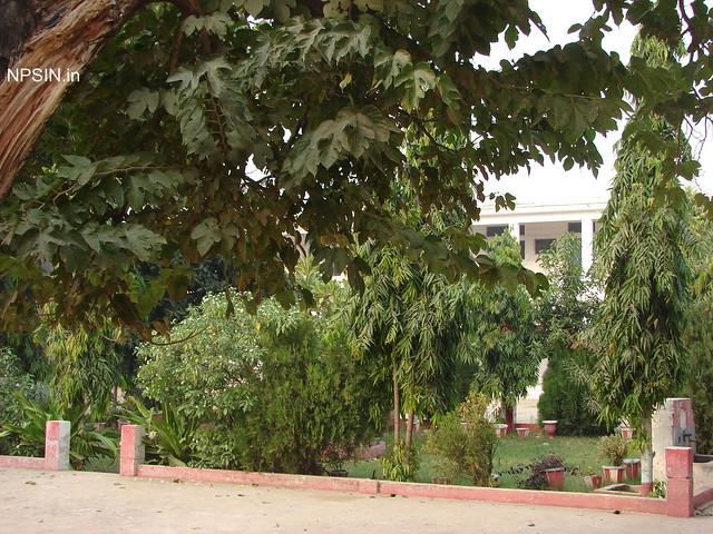 Park Area in Kshetriya Inter College (KIC)